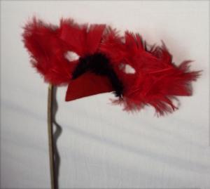 face mask of a cardinal bird