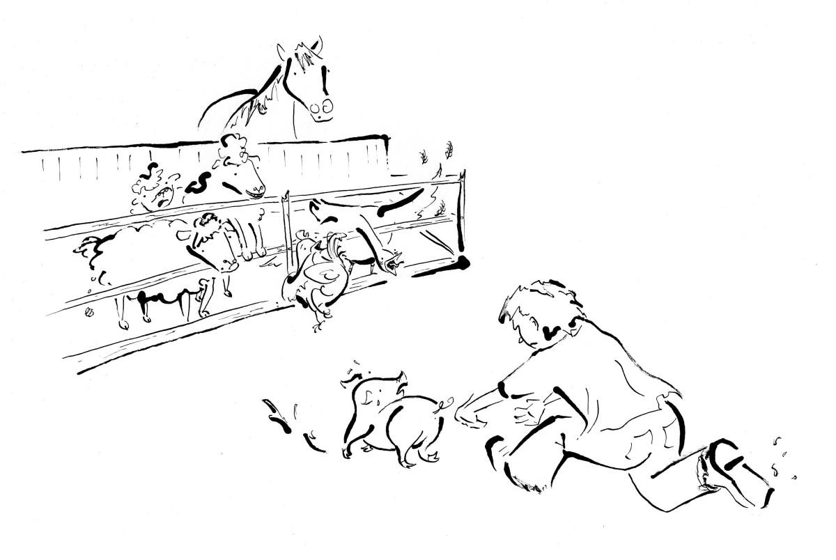 inside illustration for charlotte's web