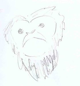 pencil sketch of a howler monkey