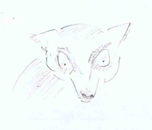pencil sketch of ring tailed lemur