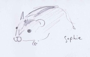 pencil drawing of sophie, my friend's hamster