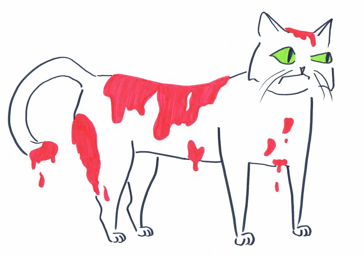 bloody pussy cat illustration