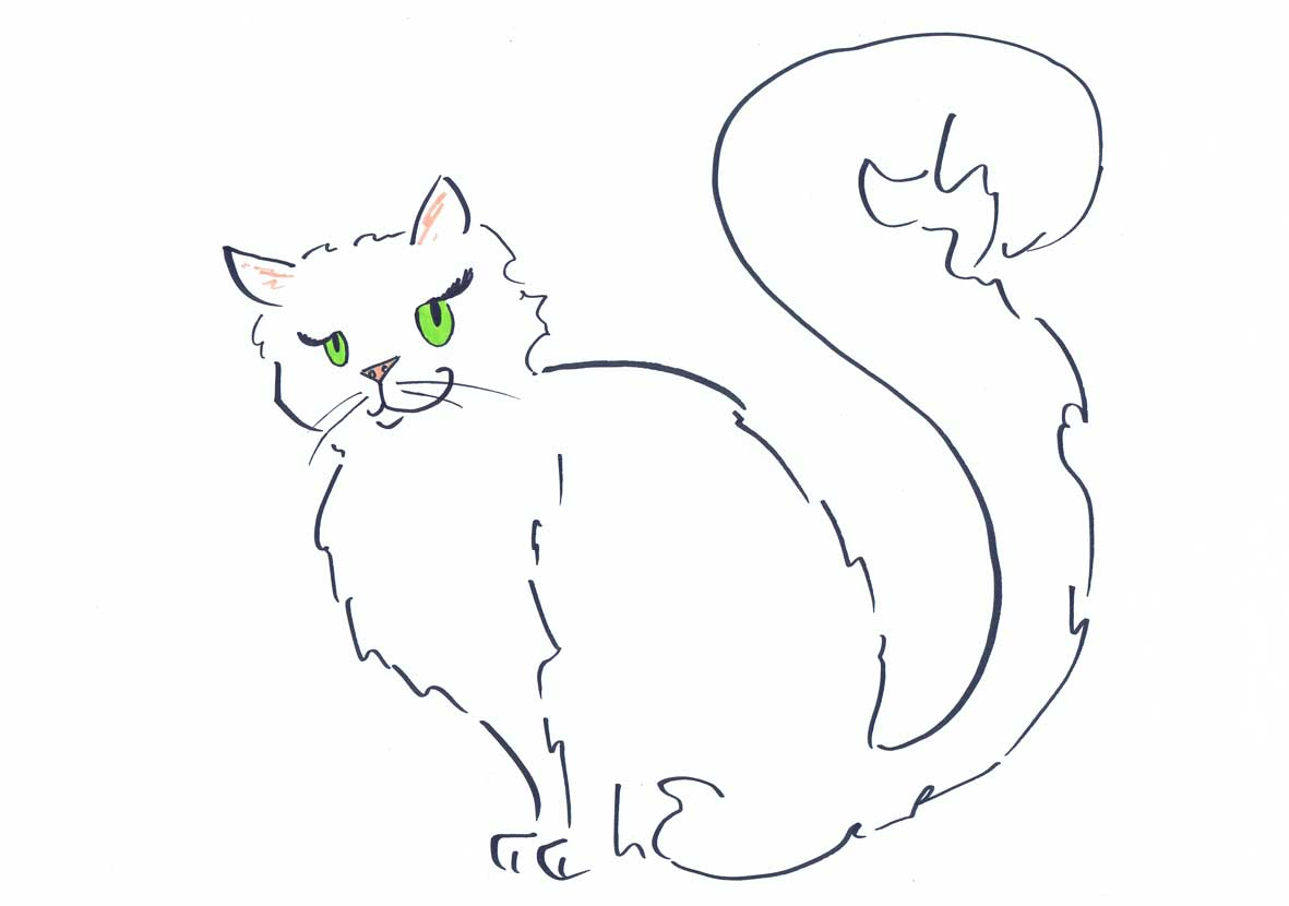 white pussy cat illustration