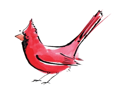 Watercolour painting of a cardinal - an American garden bird by Laura Elliott at Drawesome Illustration, Bristol. Illustration, Design, Whimsy