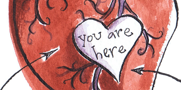 heart illustration diagram